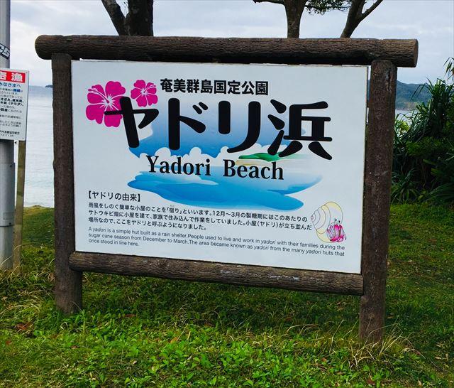 奄美大島 観光スポット ヤドリ浜