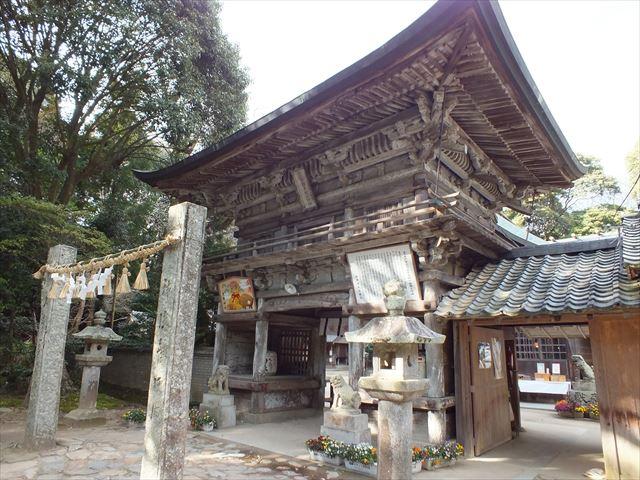 糸島 インスタ映え 桜井神社