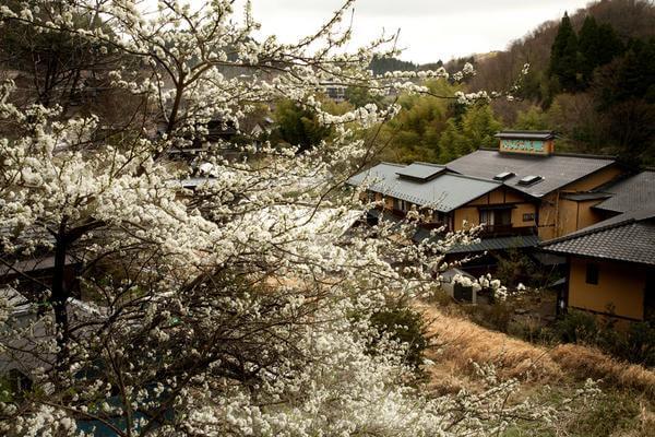 黒川温泉 春